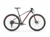 "2019 Bicykel Mondraker Chrono 29"" black light blue flame red"