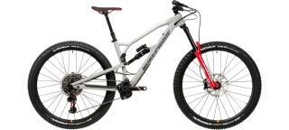 2020 Bicykel Nukeproof Mega 290 RS Grey-Dark Grey